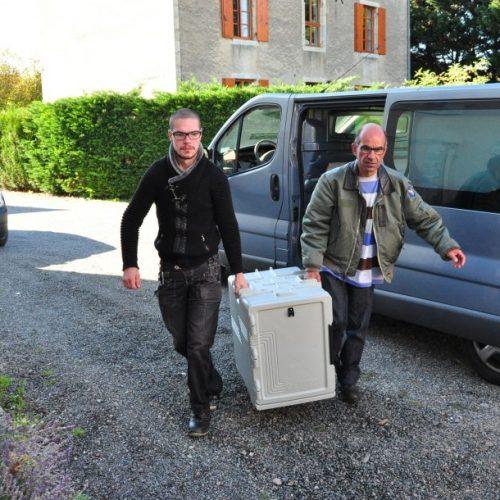 Esat Creuzier dans l'Allier en Auvergne